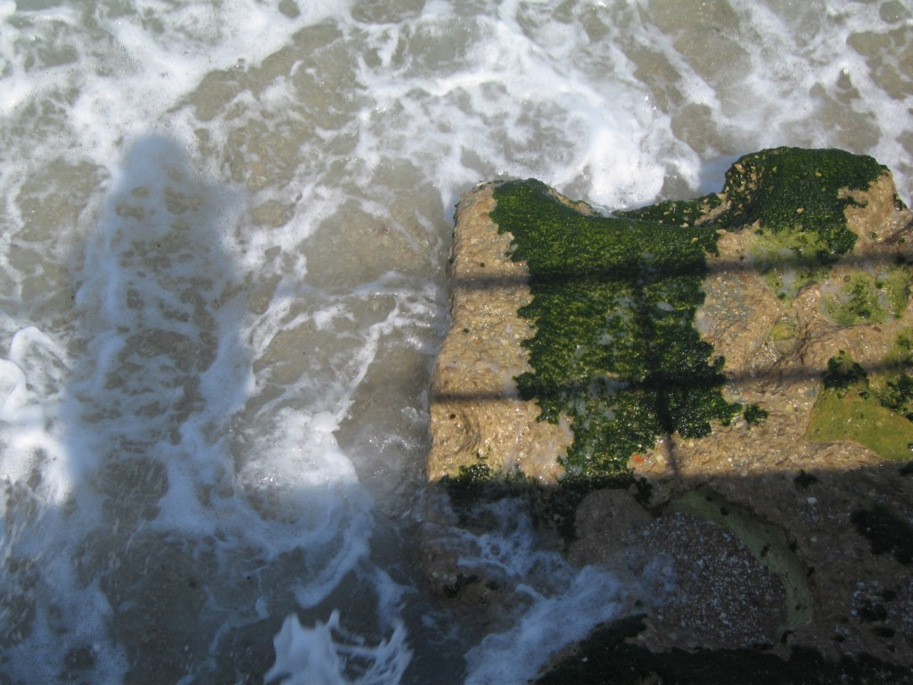 Beach-White-Green-Israel